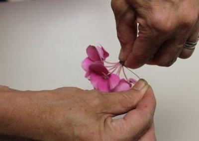 Bloemschikken 't Hent 2015-10-01 – Hortensia bloemen verstevigen met ijzerdraad